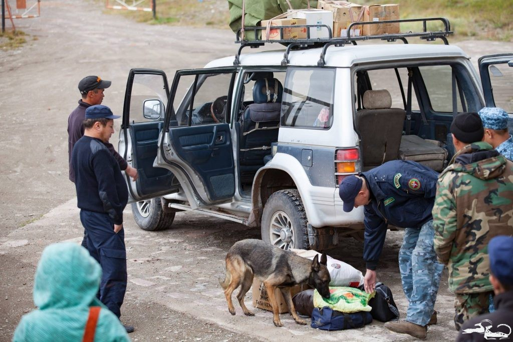 Sniffer Dogs Complete Training
